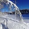 Лыжные походы, зимний отдых в Карелии с RiverPRO