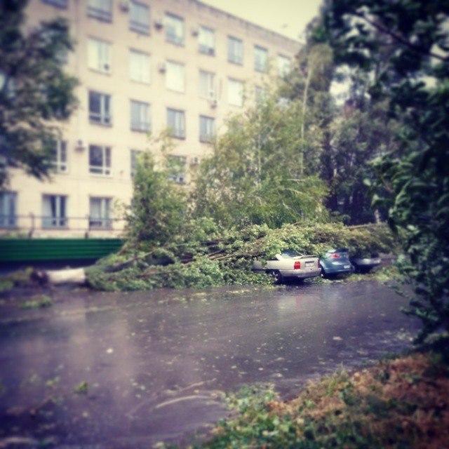 ВНИМАНИЕ! В школах Таганрога в связи с непогодой отменены занятия!