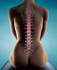 Найти костоправа по вывихам суставов в киеве остеоартроз коленного сустава 2-3 степени лечение