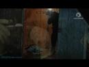 «ФБР: Борьба с преступностью (02). Холодные улицы» (Документальный, 2011)