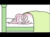 Sandra Boynton's WHEN PIGS FLY sung by Ryan Adams (animation - Official Music Video)