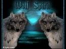 Şaman Kurt Türk Ruhu - Shaman Wolf Turk Spirit - шаманы Волк Тюркские Дух.wmv