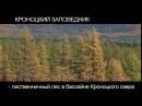 Дикая природа Камчатки Кроноцкий заповедник
