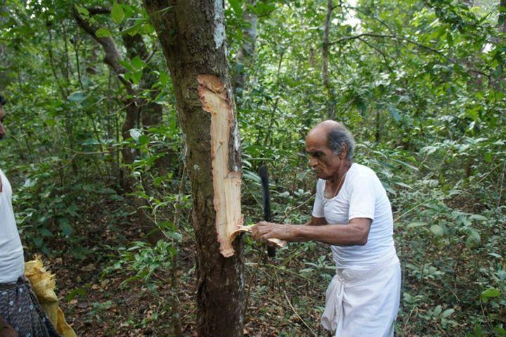 Нараянамурти - целитель из Индии, который бесплатно лечит рак.