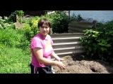 Семья Бровченко. Как правильно сделать компостную кучу (яму). Качественный компо...