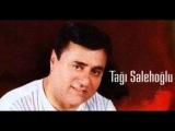 Tagi Salehoglu_Dodaginan-ßayMavi76