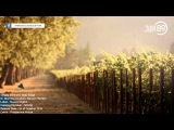 Sergey Alekseev feat. Ange - It's Morning (Andrew Benson Remix) ND109 Out 01 10 2013 THS89