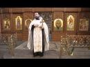 Священник УПЦ Московского патриархата Андрей Ткачев в день Татьяны проклял евромайдановцев