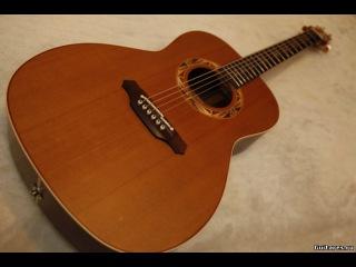 Обзор гитары Takamine LTD95, Japan (PSF95)