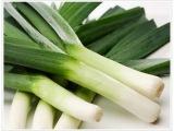 Барбарис, вырастить лук-порей, подготовка чеснока к посадке; бордосская смесь