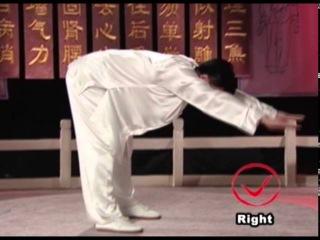 Гимнастика цигун для позвоночника (обучающее видео)
