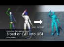 Animation Retargeting System - Biped or CAT into UE4