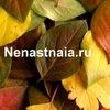 Nenastnaia.ru   Пишу, путешествую, учусь новому