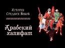 Арабский халифат рус История средних веков