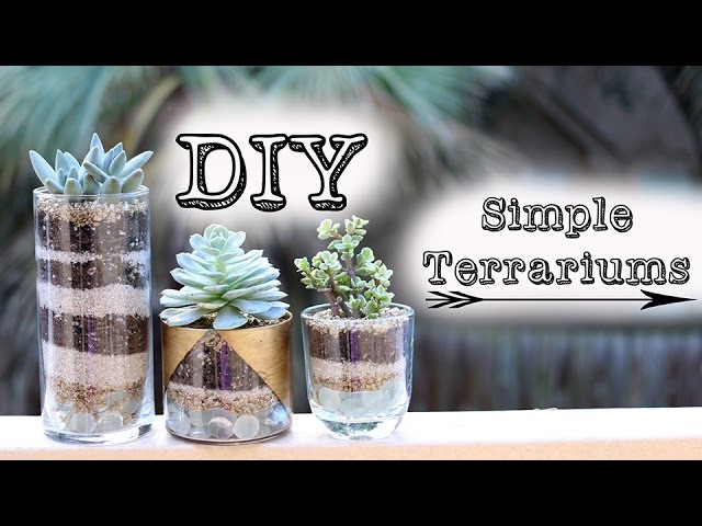 ➳ DIY Simple Succulent Terrariums Gold Jars