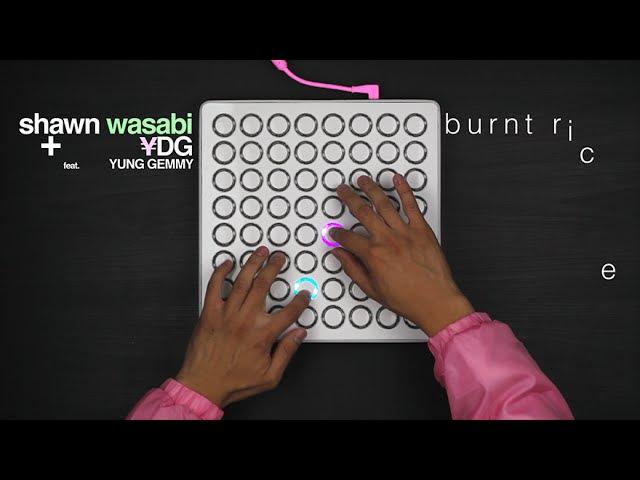 Shawn Wasabi - BURNT RICE (Original Song)