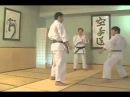 SKIF Kihon Ippon Kumite