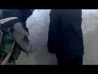 Запрещенное жестокое видео фото 552-327