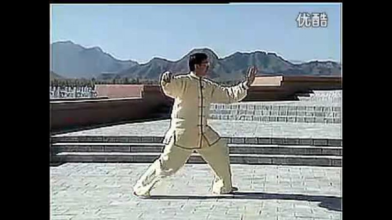 Master Cui Zhong San on Traditional Yang Style TaiChi 108 forms