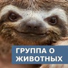 ВЕБ-ЗООПАРК