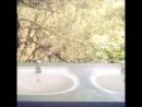 23.04.15 Туалет). Национальный парк Плато Хортон. Шри-Ланка 2015
