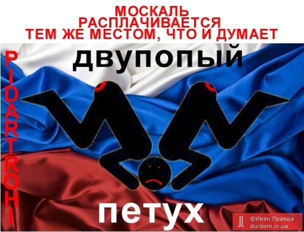 Самолет Ту-134, перевозивший первых лиц государства, проехал по улицам Киева - Цензор.НЕТ 8747