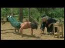 Los entrenamientos más extremos de las Artes Marciales