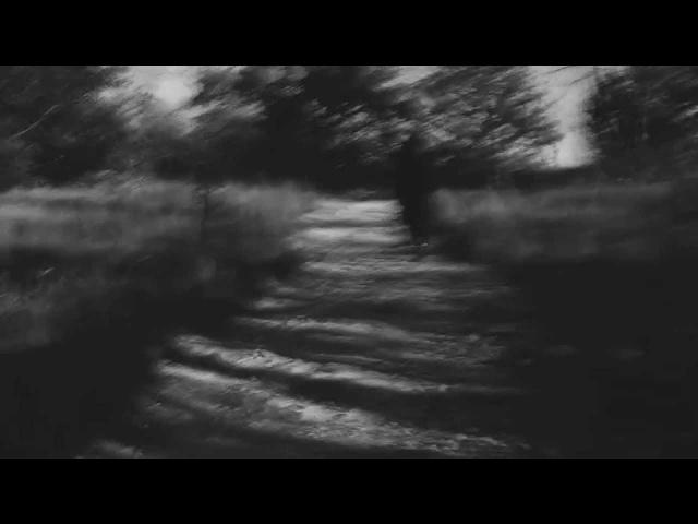 Chelsea Wolfe - Heavenly Grass