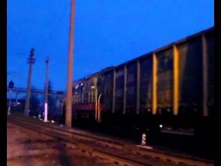 Тепловоз ЧМЭ3-5889 с грузовыми вагонами / Diesel locomotive CHME3-5889 with frieght wagons