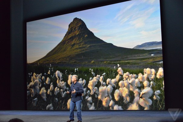 Фотографии с iPhone 6S! Действительно отличное качество.