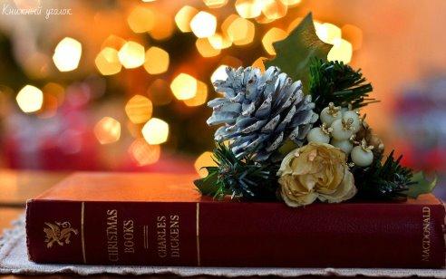 Книги на магазинных полках похожи на садовые розы из «Маленького принца».