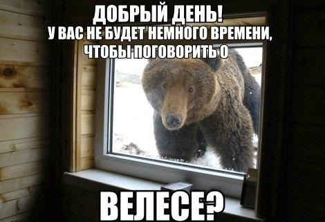 https://pp.vk.me/c622218/v622218930/9ec4/iFeuW8jIo6Y.jpg