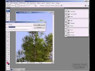 Лукьянова Зинаида - Уроки Фотошопа для начинающих (часть 5)