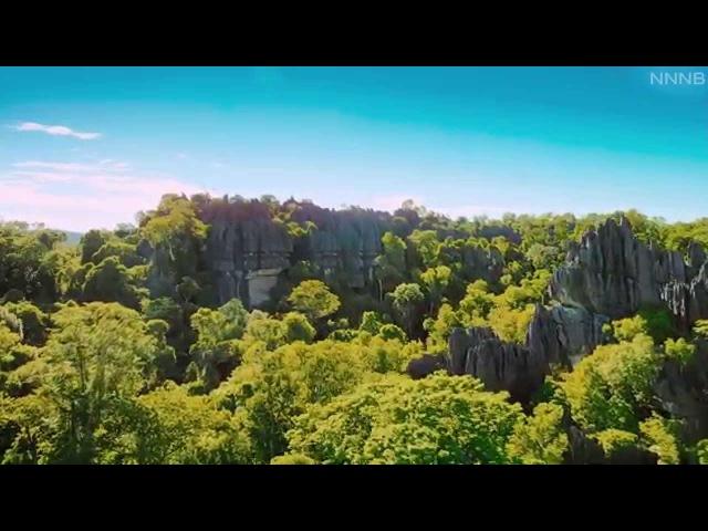 Природа Мадагаскара