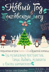 Новый Год в Токсовском лесу