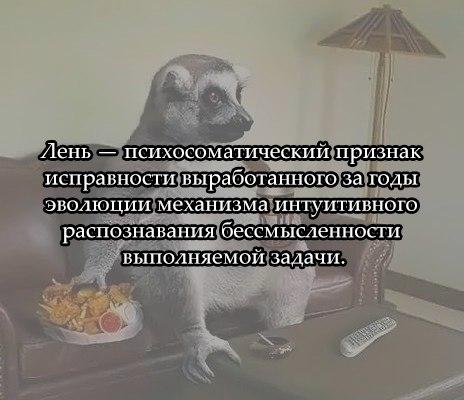 https://pp.vk.me/c622219/v622219684/2a867/AdDQeG4GoTs.jpg