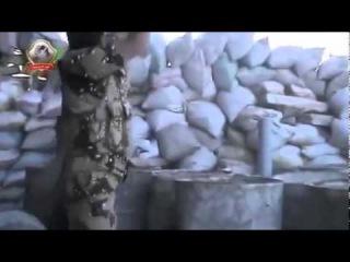 Сирия! страх перед выстрелом! стадо