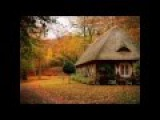 Самые красивые дома в лесу