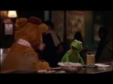 Kermit calls time on craft beer