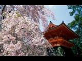Красивая песня на японском языке . 60 е годы A beautiful song in Japanese . 60 years