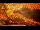 Моя душа - всего лишь Осень...