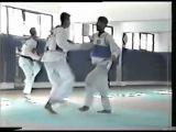 Kuk Hyun Chung training and various tournament video
