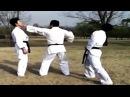 Hapkido Techniques (Grandmaster Myung Jae Ok)