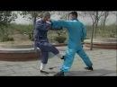 Shaolin kung fu combat 20 methods
