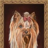 PetPortret - портреты животных Собаки Кошки Кота