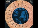 Pebbles Vol.2 - 04 - The Electric Prunes - Vox Wah Wah Commercial