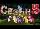 Мой Маленький Пони: Дружба - это Чудо! 5 Сезон 3 Серия 11.04.2015