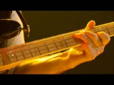 Geddy Lee ( bass Solo ) Time Machine 2011