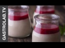 DOLCISSIMO Panna Cotta with Berry Sauce GastroLab