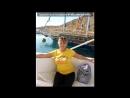 «Египет,Шарм эль шейх» под музыку Sasha Martini feat Helen Magpie - Прошу забудь...Усталость, слезы, все обиды  Я твоя...Считаю